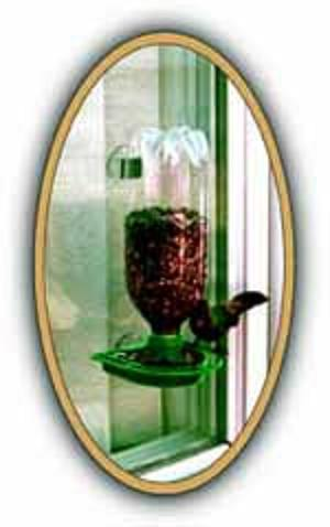 Window Feeder for Kids, poly bagged kit