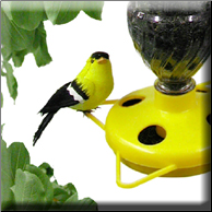 Gadjit Outdoors Soda Bottle Birdfeeders