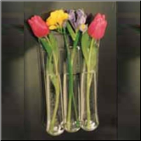 - Blossom Series of Window Vases