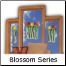 The Blossom Vases