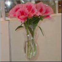 Window Vase Mini-Oval
