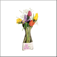 Window Vase Gift Card