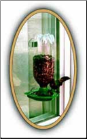 Soda Bottle Window Feeder
