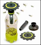 Soda Bottle Wasp Trap